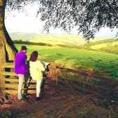 Як об'єднати земельні ділянки