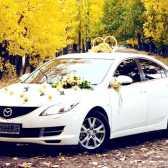 Де замовити автомобілі на весілля