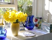 Як довше зберегти квіти у вазі