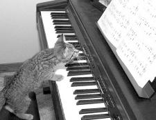 Як скласти музику до пісні
