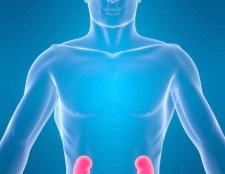 Як зміцнити нирки