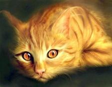Чому кішки гурчать