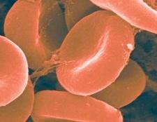 Чому підвищується гемоглобін