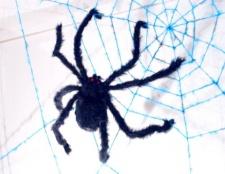 Як зв'язати павутину
