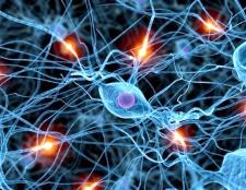Як визначити нервове захворювання