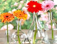 Як зберегти букет квітів