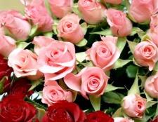 Як зберігати зрізані троянди